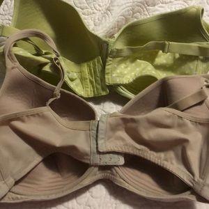 Cacique Intimates & Sleepwear - Cacique bra Bundle 40DDD